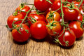 Tomatoes in trusses Stock Images