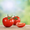 Tomatoes vegetables in summer Royalty Free Stock Photo