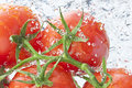 Tomatoes Water Spray Fresh Food Royalty Free Stock Photo