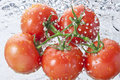 Tomatoes Water Spray Healthy Food Royalty Free Stock Photo