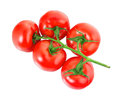Tomatoes on white background closeup isolated Stock Photography