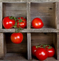 Tomatoes in a wooden crate Stock Photos
