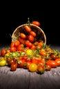 Tomatos on basket light painting Royalty Free Stock Photos