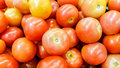 Tomatos a bucket of at supermarket market Stock Images