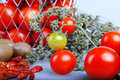 Tomatos cherry type composition with chilli and herbs Stock Photography