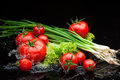 Tomatos and greenery in water small group of fresh tomatoes lying over splashes Stock Image