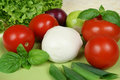 Tomatos, lettuce, onions Royalty Free Stock Photos