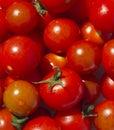 Tomatos photo of fresh background Stock Photos