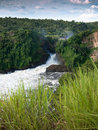 Toned image of majestic waterfall in the park Murchison Falls in Uganda against the background of the jungle Royalty Free Stock Photo
