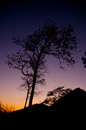 Tones of sky silhouette tree and mountain with color Stock Photo