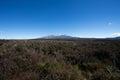 Tongariro park desert mountain Royalty Free Stock Photo