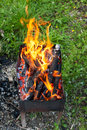 Tongues of flame on brazier fire over burning wood in outdoor Royalty Free Stock Photography