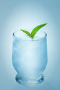 Tonic with ice and mint Royalty Free Stock Image