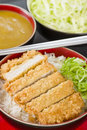 Tonkatsu japanese breaded deep fried pork cutlet on top of boiled rice served with shredded cabbage and curry sauce Royalty Free Stock Photos
