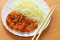 Tonkatsu japanese pork cutlet white plate japanese food Stock Image