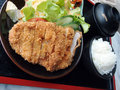 Tonkatsu set Royalty Free Stock Photography