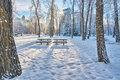 Too cold for a picnic tables in sunbeam in prince s island park Royalty Free Stock Image