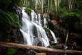 Toorongo falls in victoria australia Royalty Free Stock Images