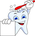 Tooth cartoon character Stock Image