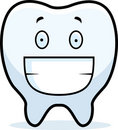 Tooth Smiling Stock Photography