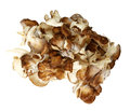 Top down view of maitake mushroom pieces over white background Stock Photo
