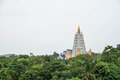Top of pagoda emerge from big forests in thailand rural Royalty Free Stock Photo
