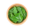 Top view of asia sweet basil leaves in wooden bowl isolated Royalty Free Stock Photo
