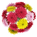 Top view bouquet of yellow red and pink flowers isolated on white Royalty Free Stock Photo
