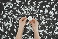 Top view of cropped female hands holding daisy with petals Royalty Free Stock Photo