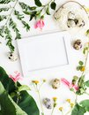 Top view flat lay Easter mockup: white photo frme with quail eggs, daisy flowers and green leaves. Holiday concept