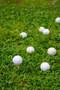 Top view of golf white ball on tee, with more balls out of focus, on grass field, Royalty Free Stock Photo