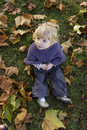 Top view of a little toddler outdoors seated in autumn leaves Royalty Free Stock Images