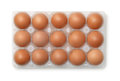 Top view of plastic egg carton with 15 eggs Royalty Free Stock Photo