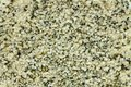 Top view of shelled hemp seeds. Can be used as background Royalty Free Stock Photo