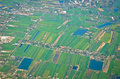 Top view of thailand can see building and agriculture Royalty Free Stock Photo
