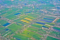 Top view of thailand can see building and agriculture Royalty Free Stock Image