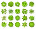 Top view trees and bushes. Aerial landscape elements. Forest and tropical tree, green park bush map icons look from