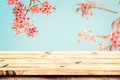 Top of wood table with pink cherry blossom flower sakura on sky background in spring season
