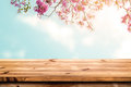 Top of wood table with pink cherry blossom flower on sky background Royalty Free Stock Photo