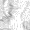 Topographic map background with space for copy . Line topography map contour background , geographic grid abstract