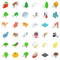 Topography icons set, isometric style