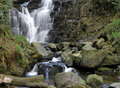 Torc waterfall - Ireland Royalty Free Stock Photo