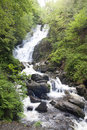 Torc Waterfall, Killarney National Park Royalty Free Stock Photo