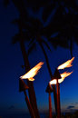 Torches at sunset Royalty Free Stock Photo
