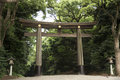 Tori gate and Lamp at Meiji-jingu temple or shrine in japanese Royalty Free Stock Photo