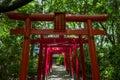 Torii in Fukuoka Royalty Free Stock Photo