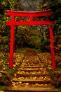 Torii Gate Royalty Free Stock Photo