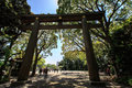 Torii Gate at Meiji Jingu Royalty Free Stock Photo