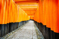 Torii gates of fushimi inari shrine in kyoto japan taisha is a shinto located ku shallow depth field focus on both sides the doors Royalty Free Stock Photos