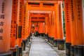 Torii gates at fushimi inari shrine in kyoto taisha japan november taisha japan on november the main Stock Photos